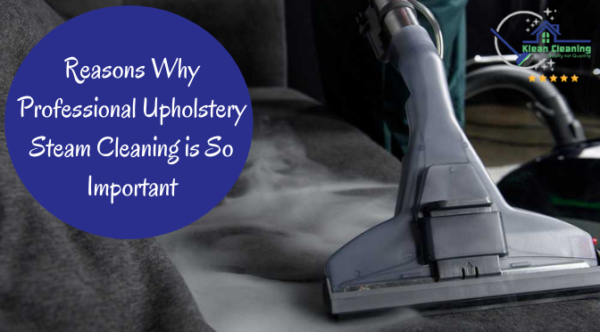 Reasons Why Professional Upholstery Steam Cleaning is So Important