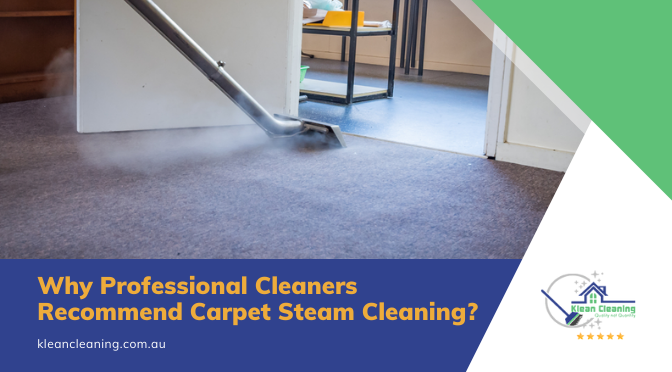 Why Professional Cleaners Recommend Carpet Steam Cleaning?